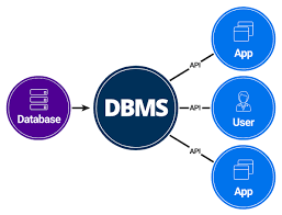 what is dbms in computer